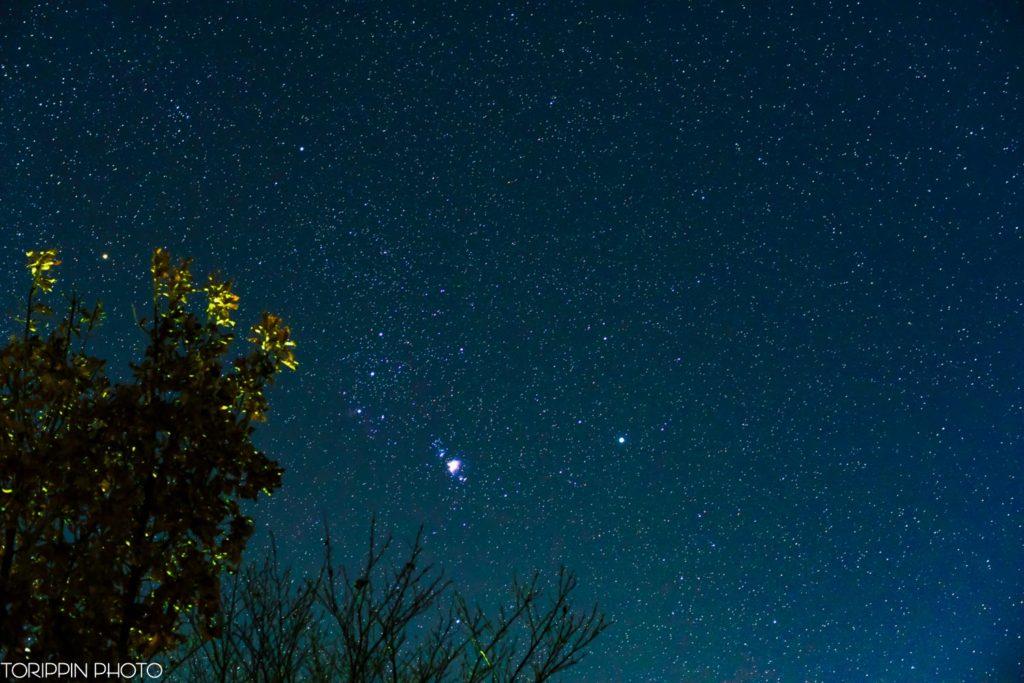 「星空」の画像